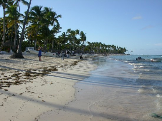 Dreams Palm Beach Punta Cana: Beach
