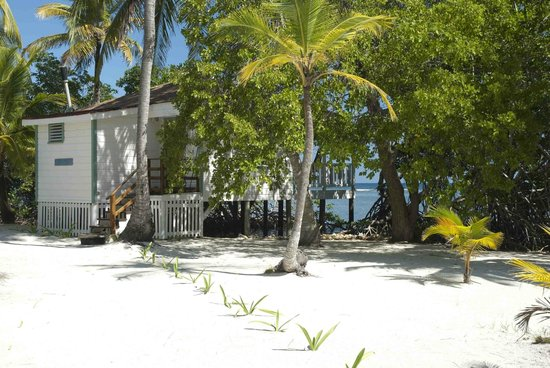 Pelican Beach - South Water Caye: View of our Cabana