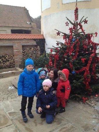 Cafe Fara: Xmas tree 2012