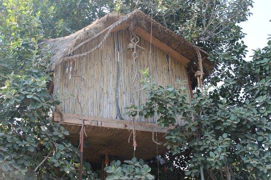 Lohagarh Fort Resort: Tree house