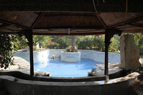 Lohagarh Fort Resort: Swimming pool