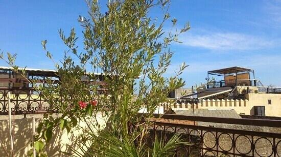 Le 44 cafe restaurant : vue depuis la terrasse