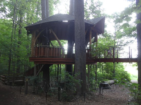 Tree House Picture Of Longwood Gardens Kennett Square