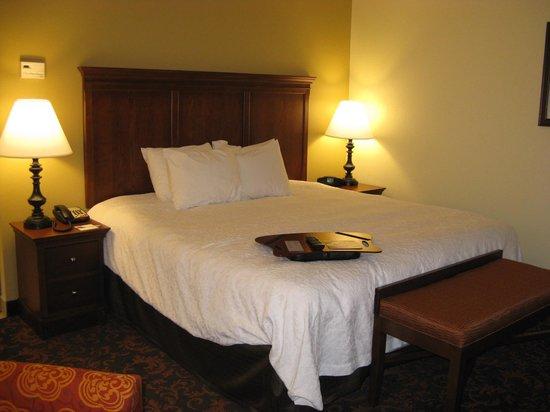 Hampton Inn Lincolnton : King Bed -- Hampton Inn, Lincolnton, NC