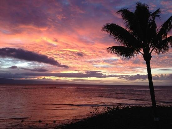 Kahana Village: Sunset view..