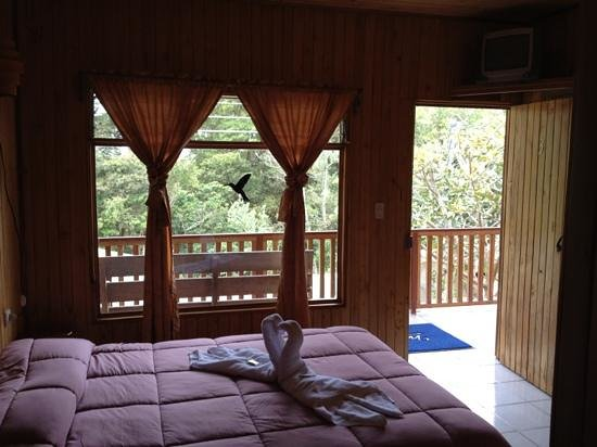 Monteverde Villa Lodge: room facing the window, with nice swan shaped towels on the bed