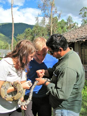 Centro de Rescate Guayabillas: Feeding the snakes