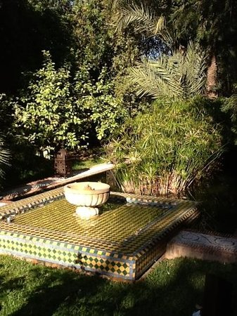 Dar Rhizlane : Garden area with orange trees