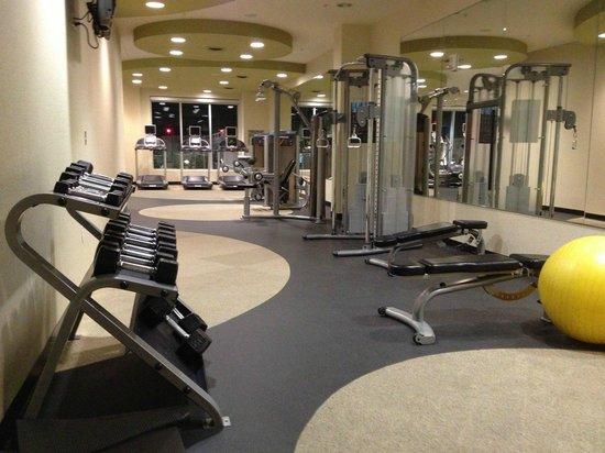 SpringHill Suites Las Vegas Convention Center: Fitness Machines