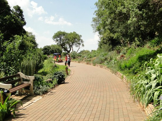 Walter Sisulu National Botanical Gardens: Paths... and the train for kids...