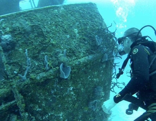 Scuba Playa Dive Shop : Wreck 06