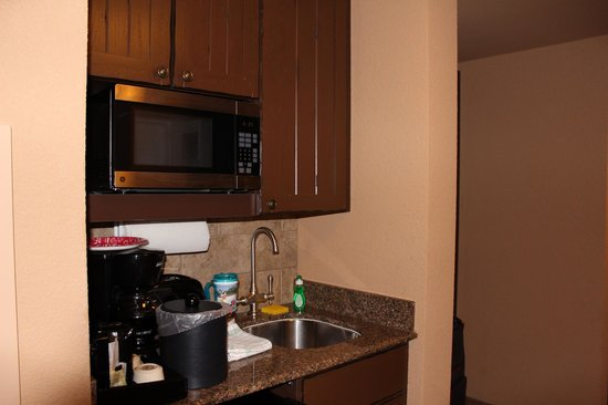 Disney's Animal Kingdom Villas - Kidani Village: Studio kitchenette