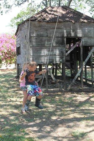 Kilcoy Farmstay: swing