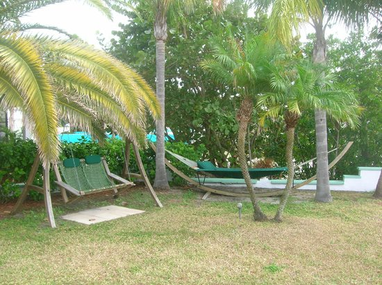 Banana Bay Waterfront Motel: swing and hammack