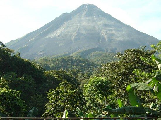 Arenal Kioro Suites & Spa: Volcan visto desde la habitación