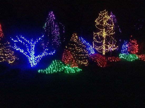 Meadowlark Botanical Garden: Walk of Lights