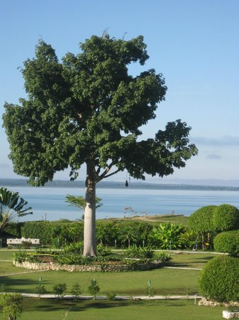 La Casa De Don David: grounds and beach