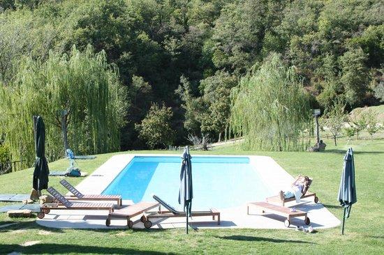 Allegro Agriturismo Argiano: Pool