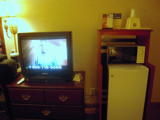 Wyndham Garden Romulus Detroit Metro Airport: Tube TV, dial microwave, fridge