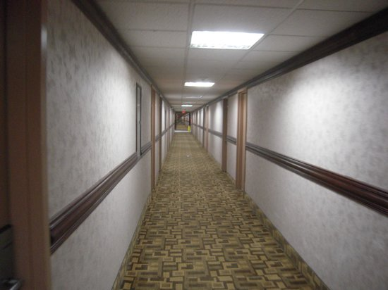 Wyndham Garden Romulus Detroit Metro Airport: Lots of hallways