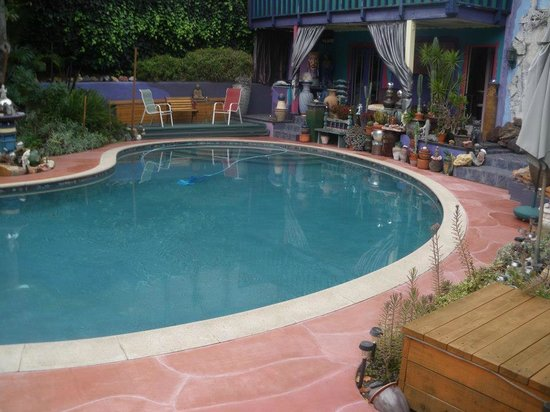 Hollywood Bed & Breakfast: Pool