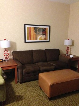Drury Plaza Hotel Nashville Franklin: living room