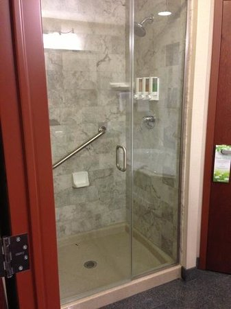 Drury Plaza Hotel Nashville Franklin: separate shower