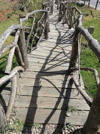 Orquideas Moxviquil: the bridge before the entrance