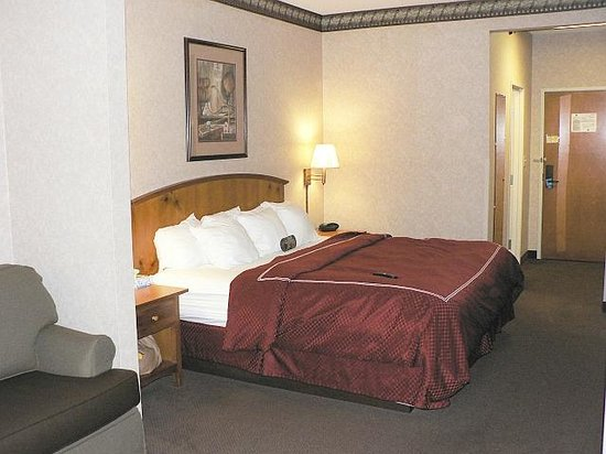 Comfort Suites: Overall view of guest room