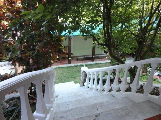 Montezuma Pacific Hotel: Garden near common kitchen