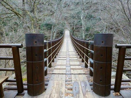 Hananuki Valley: 汐見滝吊橋。主塔が無い「キャットウォーク形式」と書かれていました。