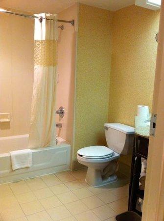 Hampton Inn Atlanta / Peachtree Corners / Norcross: Bathroom