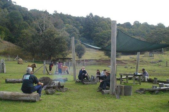 Mystery Mountain Educational Farmstay: Casual dining at Mystery Mountain Farm