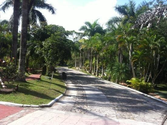 Hotel Marbrissa : camino