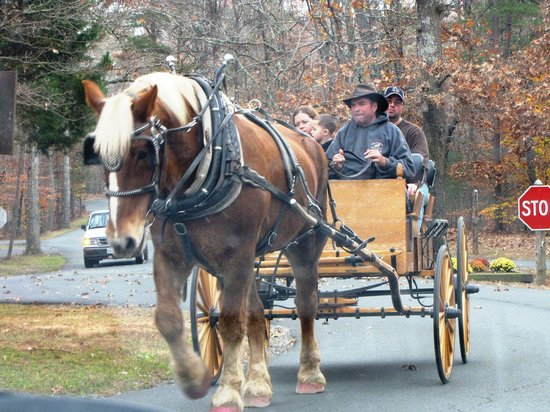 Shenandoah Crossing: Wagon Rides Around the Grounds