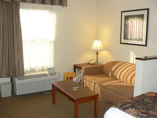 Best Western Suites Near Opryland: Lounge area in our room