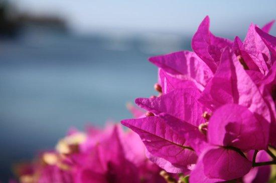 The Kuleana Resort: Going to private beach