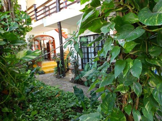 Hotel el Moro: Garden area