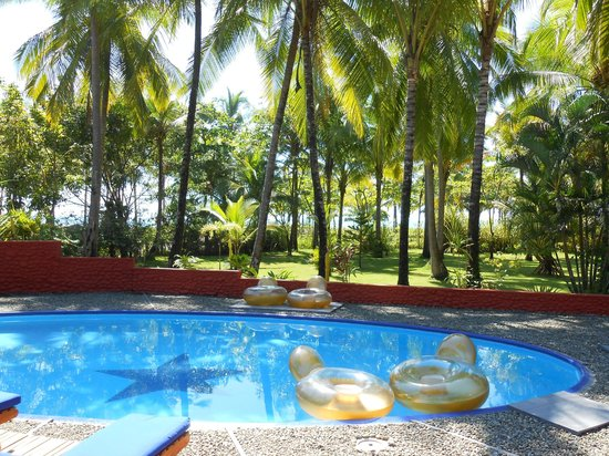 Beso del Viento: Pool, with grounds - beach is just beyond the trees