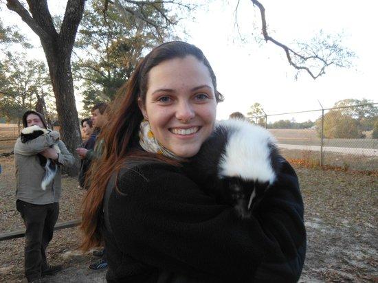 Seacrest Wolf Preserve: Buttercup the skunk