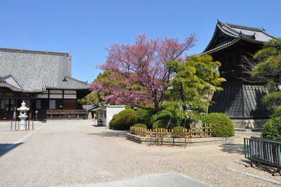 Kenchuji Temple