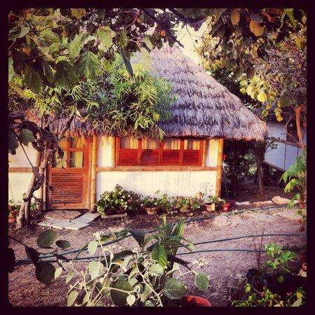 Muyuyo Lodge: Bungalows! :)