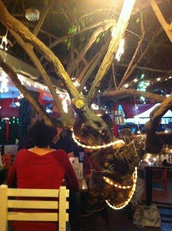 Asjemenou Green Lanka Restaurant