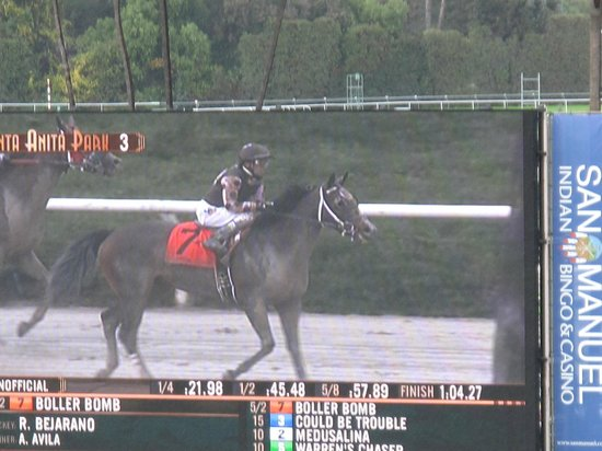 Santa Anita Race Park: A winning horse!