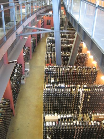 National Wine Centre of Australia : Cellar of Wines
