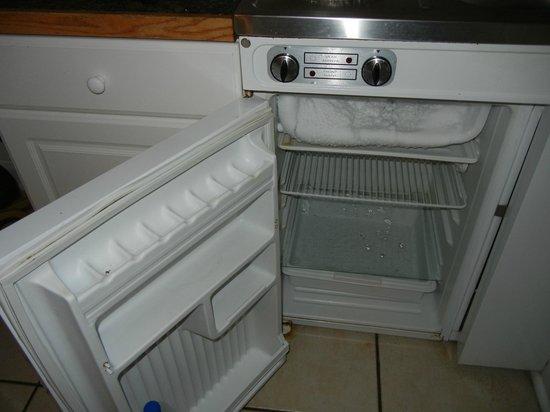 Lorraine Hotel: fridge 
