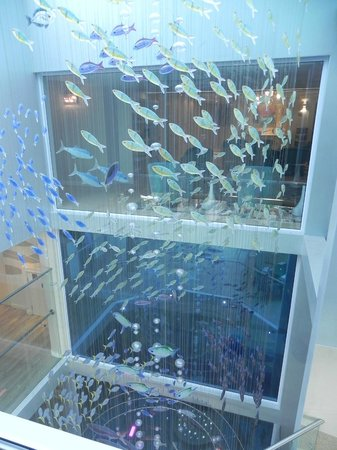 Views Boutique Hotel & Spa: Fish floating outside our room