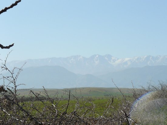 Jnane Tihihit: View from the hotel on the Atlas chain (Toubkal)