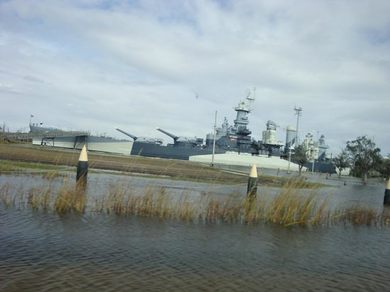 north Escort carolina wilmington services