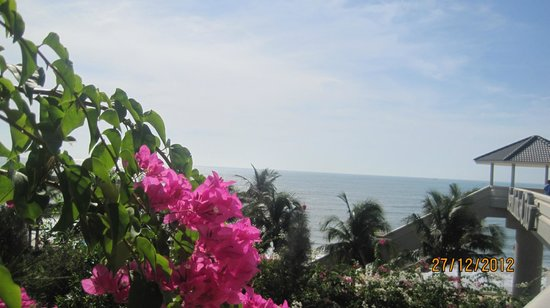 Sea Links Beach Hotel: Blooming bougainvillea surround the grounds 